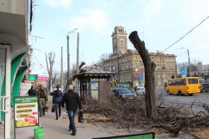 Подрезка не Понтелемоновской 28.03.2016