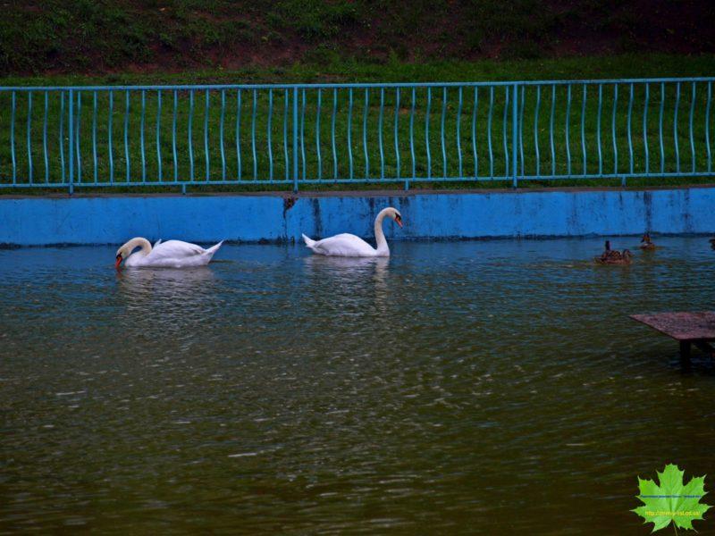 Прогулка в Одессе в октябре 14