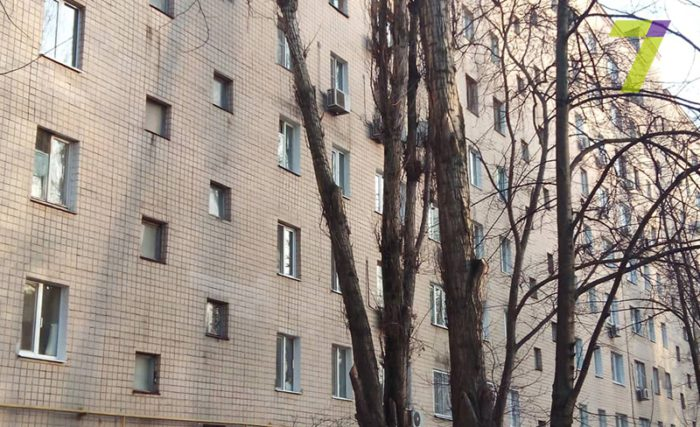 Одесские активисты: удаление зеленых насаждений в городе полностью перешло в тень, фото: 7 канал