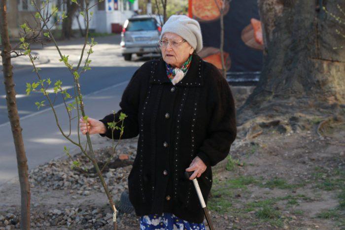 В Приморском районе Одессы поливают деревья соляркой для установки новых МАФов _1