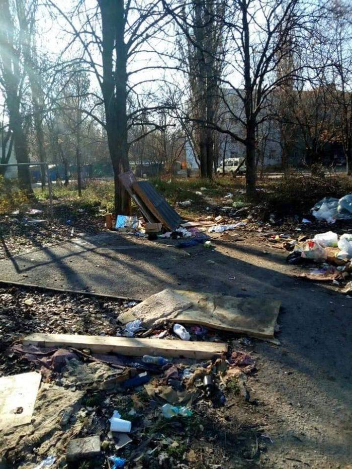 В одесской школе разбили сквер из каштанов