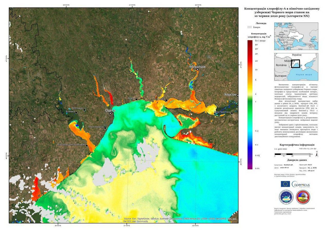 Возможно ли чистое море без водорослей на пляжах Одессы