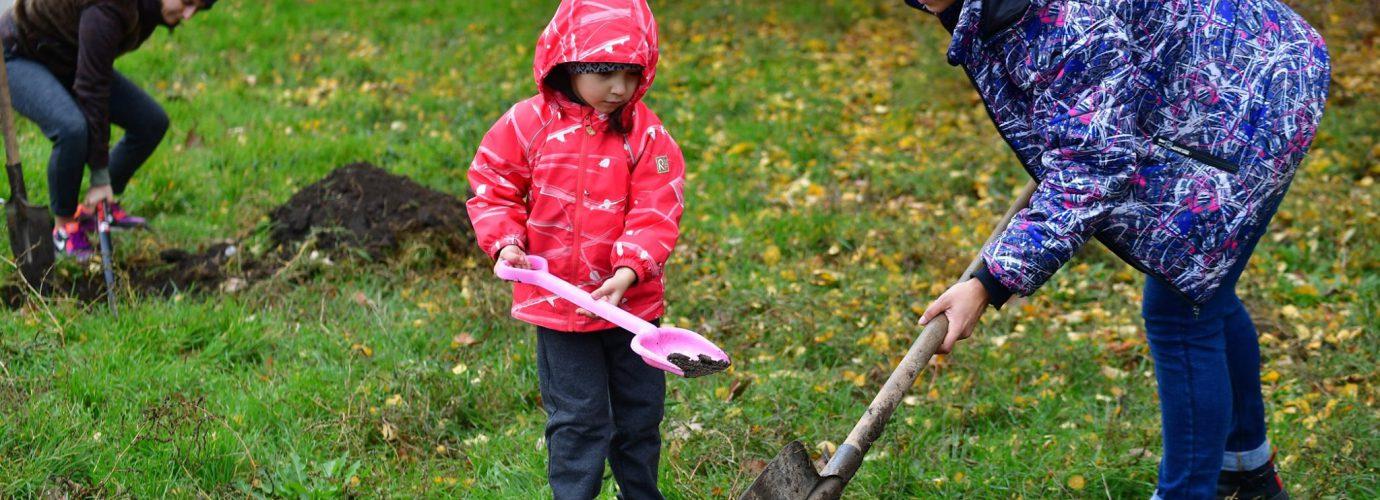 Висадка дерев в Одесі!  Приєднуйся до громадської ініціативи ГО «Зелений лист».